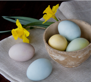 Easter Egg Coloring Guide Finished Eggs with Daffodils